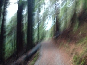 still getting the hang of mid-run photography. On Capilano Pacific Trail!