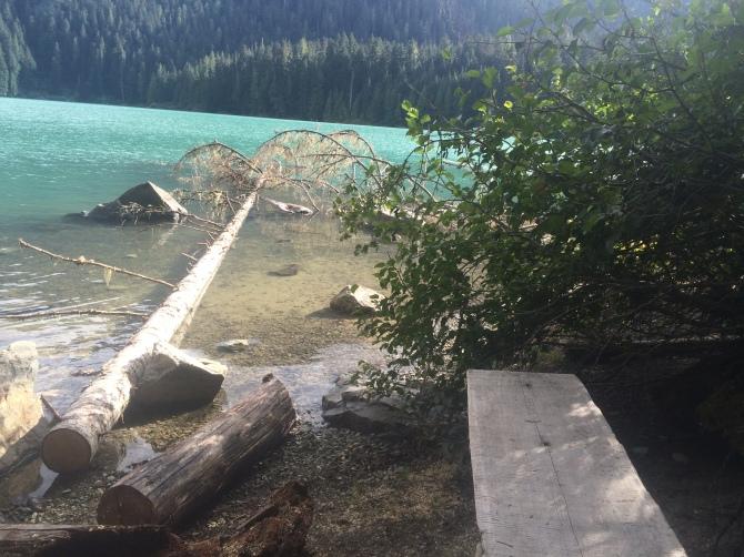Camping at Cheakamus Lake!