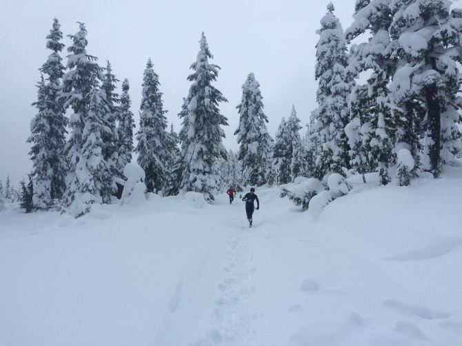 Running to Elfin Lake with Drew and Dave!