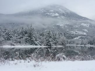 Out the back door in the Squamish Estuary.