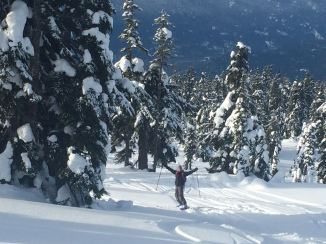 Skiing down from Paul Ridge area in Squamish.