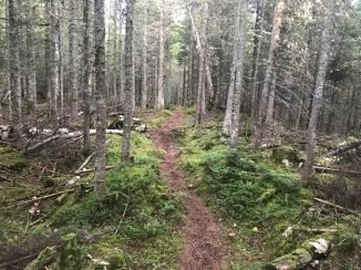 Ultra Trail Harricana course